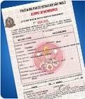 Licença do Corpo de Bombeiros com Menores Preços em Cajamar - Licença do Corpo de Bombeiros